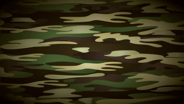 Military background Video animation Military camouflage background, Video animation, HD 1080 camouflage clothing stock videos & royalty-free footage