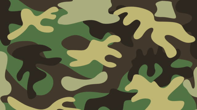 military camouflage design, Video Animation video