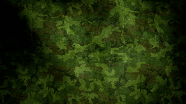 Military camouflage Waving animation with pattern camouflage clothing stock videos & royalty-free footage
