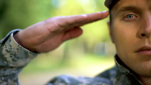 Military serviceman saluting, protection strategy, war mission, armed forces Military serviceman saluting, protection strategy, war mission, armed forces veteran stock videos & royalty-free footage