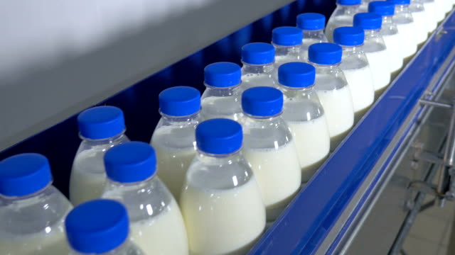 Milk factory. Bottles of milk moving on a industrial conveyor video
