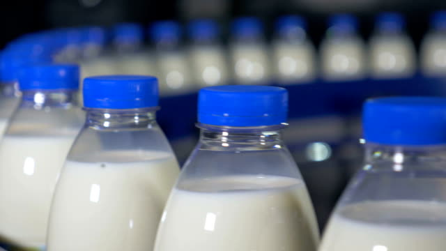 Milk factory. Bottles of milk moving on a industrial conveyor video