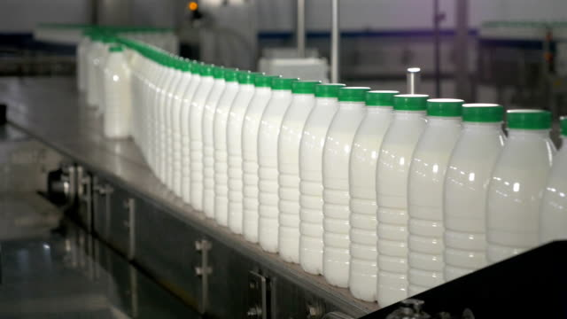 Milk in bottles moving on conveyor. Milk with green caps on a conveyor belt at a dairy factory video