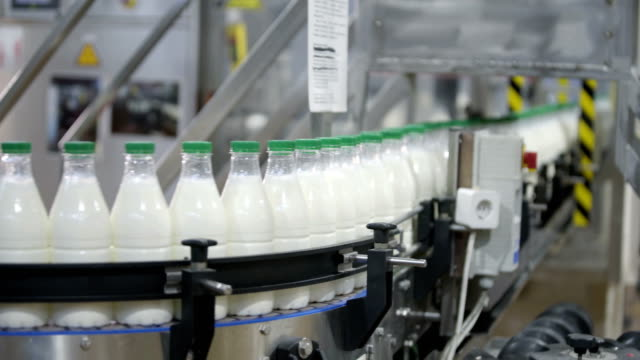 Milk production, plastic bottles transported on conveyor, packaging process - video