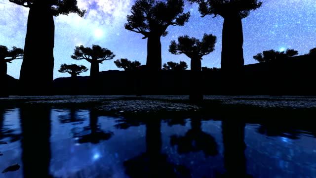 vintergatan och baobabträdet i afrika - morondava bildbanksvideor och videomaterial från bakom kulisserna