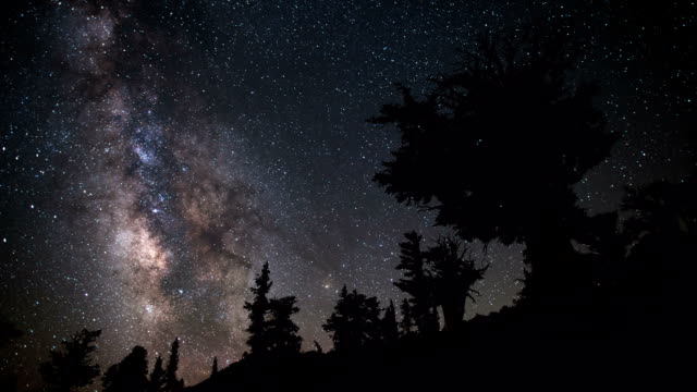 TIME LAPSE: Milky Way and Bristlecone video