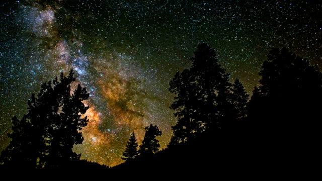 Milky Way Core Timelapse Passing Between Trees video