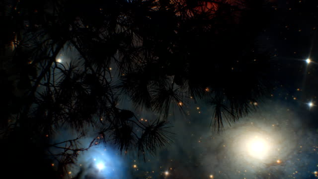 Milky Way Galaxy and tree (loopable) video