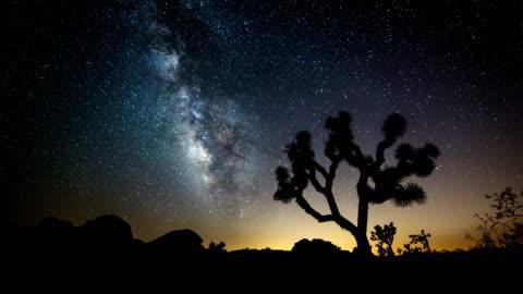 TIME LAPSE: Milky Way in Desert Joshua Tree beneath Milky Way at Joshua Tree National Park California. Time Lapse  extreme terrain stock videos & royalty-free footage