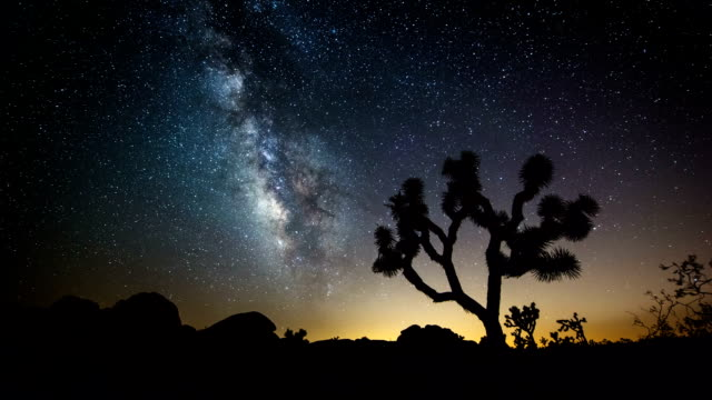 time lapse: la via lattea nel deserto - parco nazionale video stock e b–roll