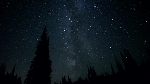 Milky Way time lapse over a forest video