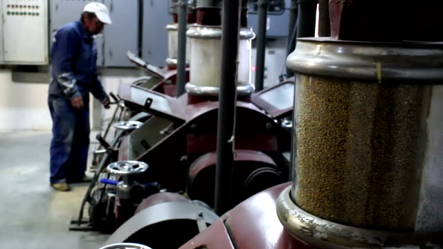 Mill operator Electric mill for grinding wheat and worker who control of production machinery,video clip pipe connector stock videos & royalty-free footage