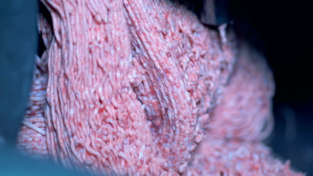 minced meat is being released by a meat chopping machine - prodotti supermercato video stock e b–roll