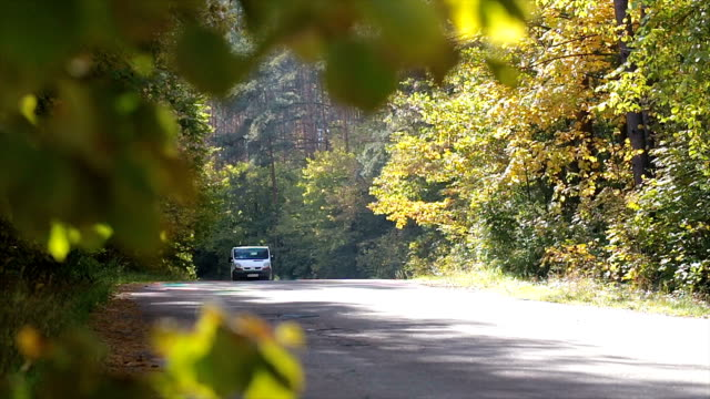 Mini van driving on a road in the autumn forest. video