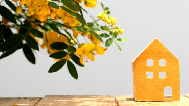 miniature model of house with flower video