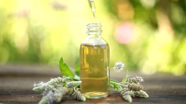 olio essenziale menta in bella bottiglia sul tavolo - oli, aromi e spezie video stock e b–roll