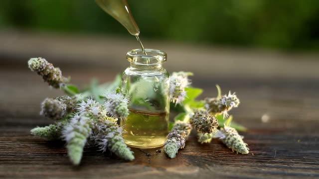 mint essential oil in  beautiful bottle on table - oli, aromi e spezie video stock e b–roll