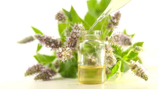 mint essential oil in  beautiful bottle on white background - oli, aromi e spezie video stock e b–roll
