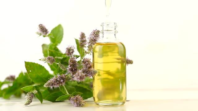 olio essenziale di menta in bella bottiglia su sfondo bianco - oli, aromi e spezie video stock e b–roll