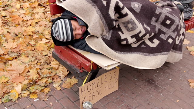 Miserable bum sleeping on bench with sign asking for help, homeless person video