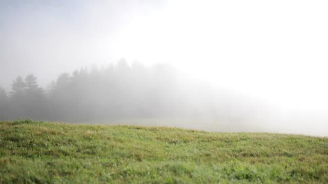 vídeos de stock, filmes e b-roll de nuvens de neblina sobre montanhas alpes no tirol - tyrol state austria