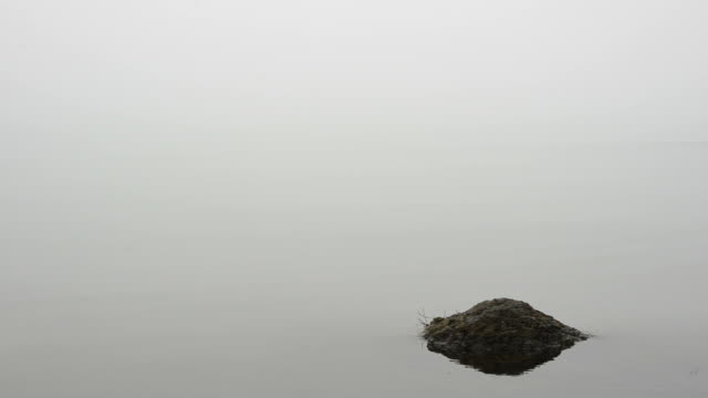 Mist in the lake video