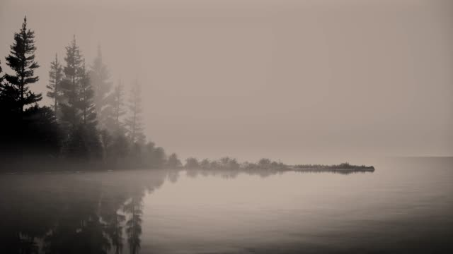 vídeos de stock, filmes e b-roll de névoa em um lago no alvorecer com árvores. - países bálticos