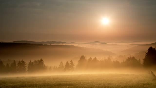 żuraw w dół: mglisty krajobraz - podświetlony filmów i materiałów b-roll
