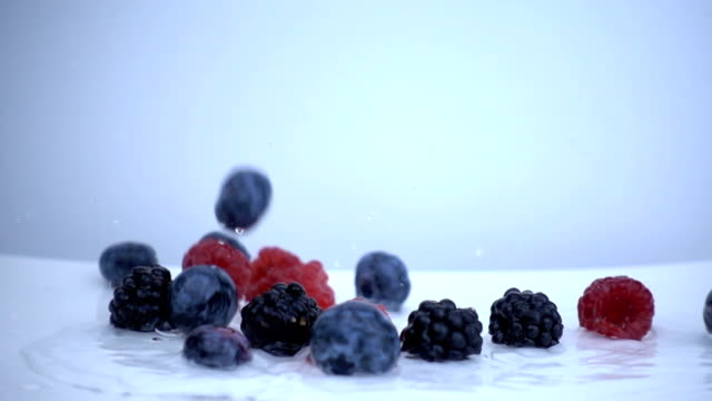 vídeos de stock e filmes b-roll de mix of berries falling into fresh water in slow motion. - baga