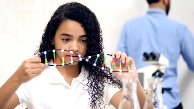 Mixed race middle school student takes notes while examining DNA helix model Confident female middle school student examines a DNA helix model. She turns the model over and takes notes. A male teacher is writing on a whiteboard in the background. middle school teacher stock videos & royalty-free footage