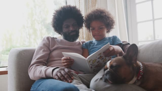 mixed race pre teen boy and father sitting on a sofa with their sleeping pet dog, reading a book together, selective focus - bambino cane video stock e b–roll
