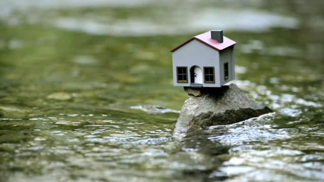 Model in the river. ビデオ