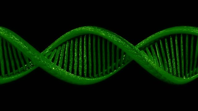 3D model of a DNA double helix with alpha channel