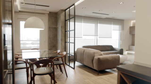 Modern apartment dining room and living room
