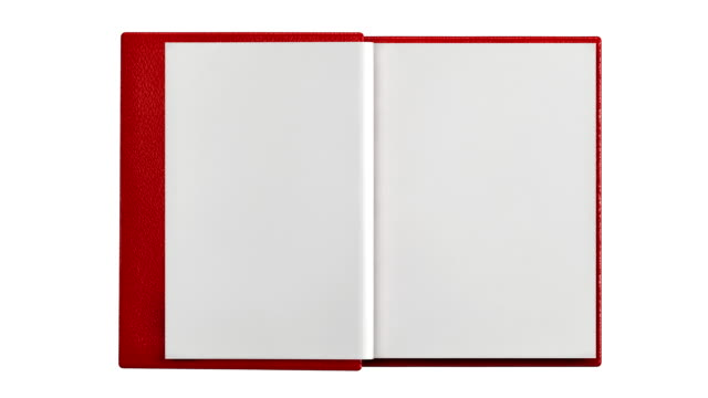 stockvideo's en b-roll-footage met modern blank  book isolated - pagina