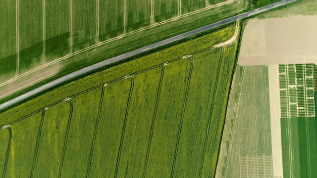 Modern countryside landscape. Aerial view video