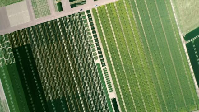 modern countryside landscape. aerial view - gospodarstwo ekologiczne filmów i materiałów b-roll