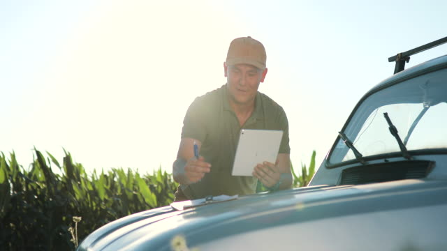 A Modern farmer with a tablet in his hands inspects corn shoots to analyze the future harvest and product quality. Farm management via Internet video