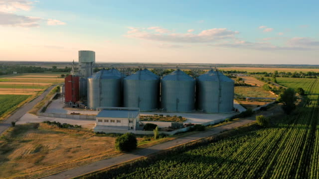 modern grain silos elevator at the field of blooming sunflowers aerial view modern grain silos elevator at the field of blooming sunflowers aerial view tray stock videos & royalty-free footage
