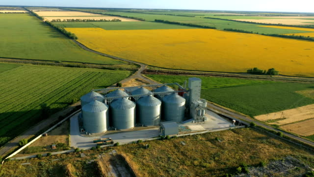 modern grain silos elevator at the field of blooming sunflowers aerial view