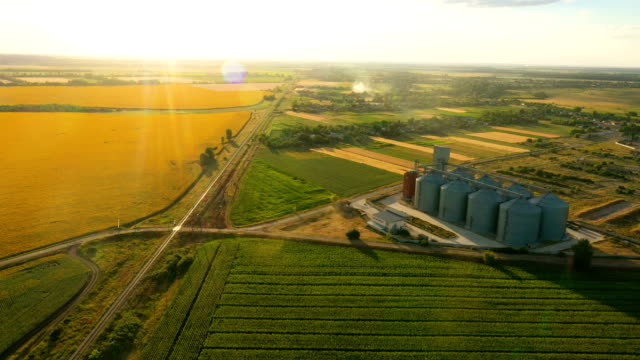 modern grain silos elevator at the field of blooming sunflowers aerial view modern grain silos elevator at the field of blooming sunflowers aerial view ground culinary stock videos & royalty-free footage