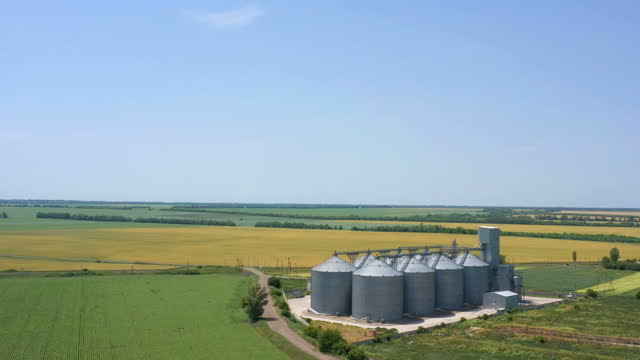 modern grain silos elevator at the field of golden wheat aerial view modern grain silos elevator at the field of golden wheat aerial view tray stock videos & royalty-free footage
