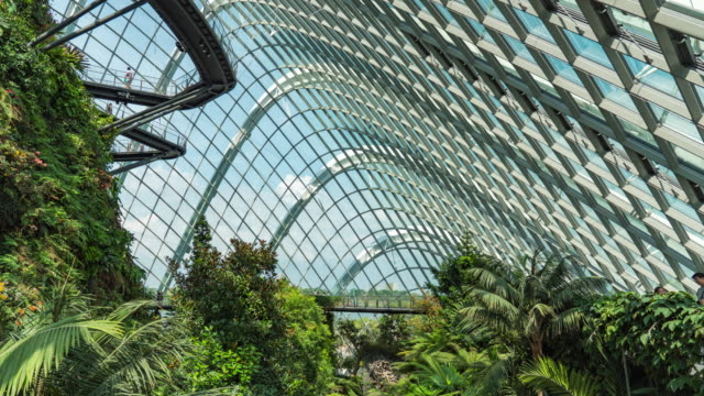 Modern Indoor Park, Time Lapse Video Modern Indoor Park, Time Lapse Video singapore architecture stock videos & royalty-free footage