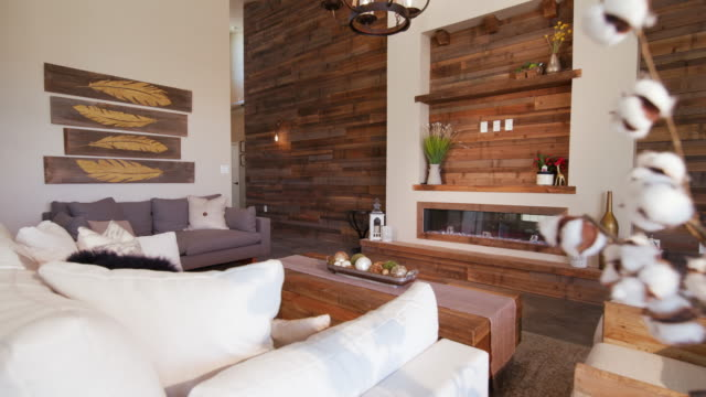 Modern Living Room Angle Reveal from Behind Plant