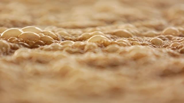 fermentazione della melassa - fermentare video stock e b–roll