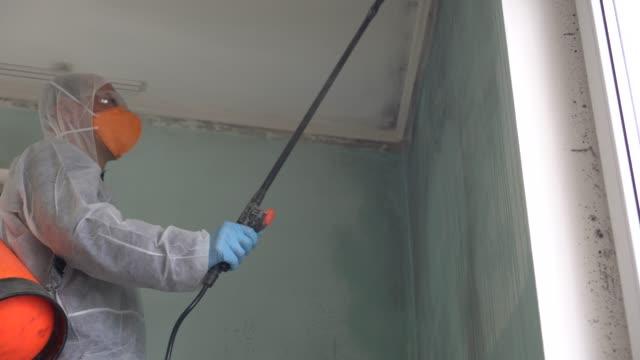 schimmelbeseitigungsexperte. schimmelinspektionen und luftqualitätsprüfungen - giftstoff stock-videos und b-roll-filmmaterial