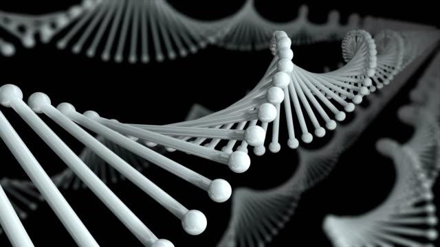DNA Molecule Loop black background video
