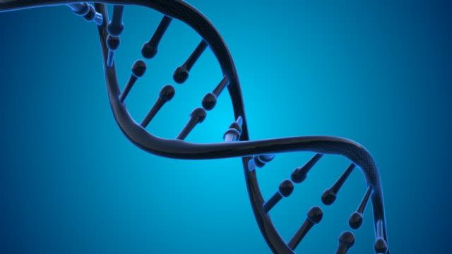 4K DNA Molecule - Loopable video