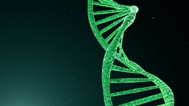 DNA molecule 3D rendered animation of rotating DNA molecule on light green background. biochemistry stock videos & royalty-free footage