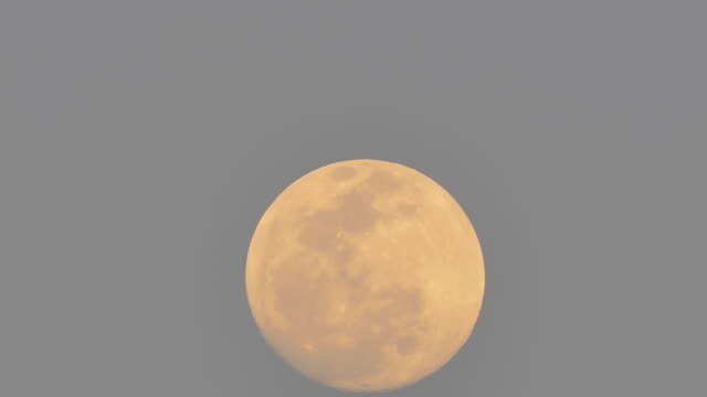 Moment of full moon on sky, Time Lapse. video